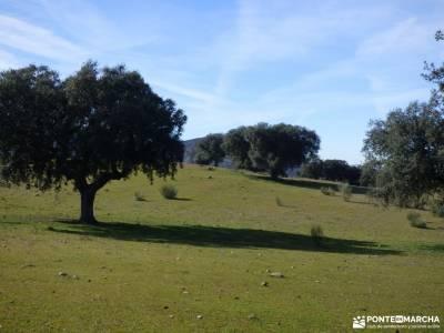 Ciudad de Vascos-Dolmen de Azután;club montaña madrid los galayos gredos marcha en madrid